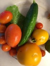 A days harvest 2014